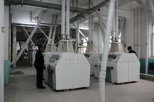 Maize Milling Plant with Dry Milling Method