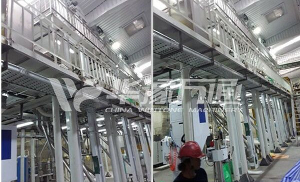 Thailand Mung Bean Peeling Line Installation and Commissioning